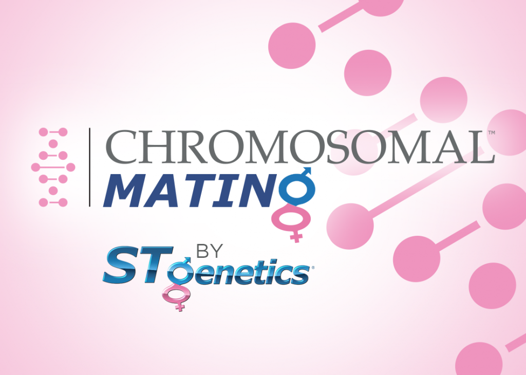 CHOMOSOMAL MATING BY STGEN